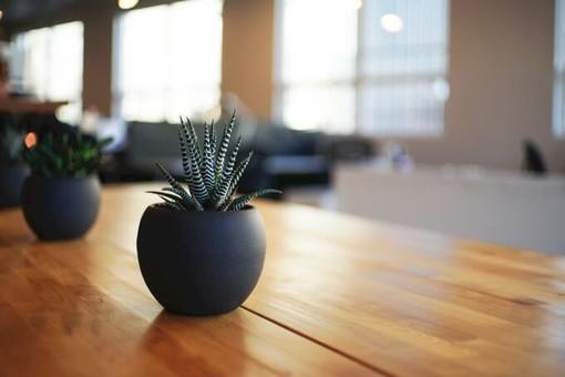 Vasi di cristallo: 5 idee per decorare casa